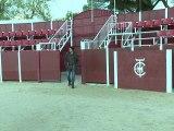 Espagne: les rêves des toreros en herbe dans un pays de plus en plus anti-corrida