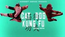 Un chat et un chien font du Kung Fu en l'absence de leur maîtresse