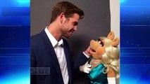Ask Steve: Ill send Liam Hemsworth your message! || STEVE HARVEY