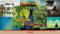 Download  Lets Look at Animal Feathers Looking at Animal Parts PDF Online