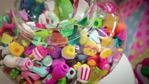 Shopkins and The Little Runway - Kids Fashion Runway Event