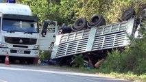 Accident de camion dans le sud-est de la Thaïlande aller trop vite vers le bas dune colline escarpée