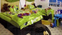 Desain Interior Rumah Minimalis Bernuansa Hijau