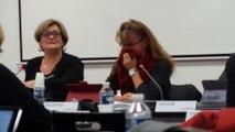 Conseil municipal du 17 décembre 2015 - L'adjointe à la jeunesse s'amuse bien…