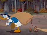 Donald Duck Cartoons Full Episodes - Catteries Not Included