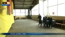 Un marché aux volailles annulé dans le Gers après la découverte de deux nouveaux foyers de grippe aviaire