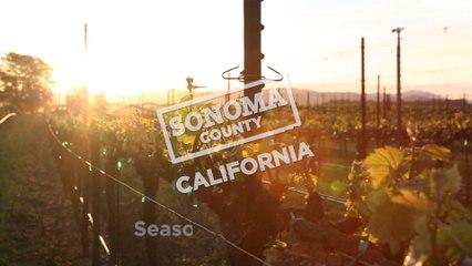 Seasons of Sonoma County