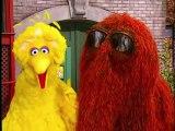 Sesame Street - Elmos World - The Street We Live On - French - Oznoz