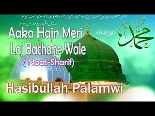 HD New Naat Sharif || Aaka Hain Meri Laj Bachane Wale || Hasibullah Palamwi