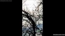 OVNI UFO ALIEN EXTRATERRESTRE UN POSIBLE PLATILLO VOLADOR VIDEOGRABADO POR UN SKYWATCHER OBJETO VOLADOR NO IDENTIFICADO TIJUANA DICIEMBRE 2015