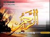 Quran Tilawat Surah Rehman - Inspiring & Heart Touching Video -