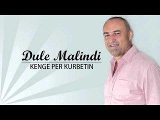 Dule Malindi - Kenge per kurbetin (Official Video HD)