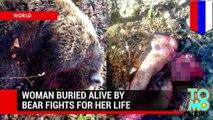 Worst animals attacks! Bear kills woman, crocodile kills swimmer, pit bull attacks & more - TomoNew