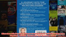 Microbes Mindcrobes Human Entanglement with Microbes on a Physical Mental Emotional and
