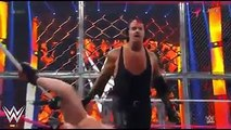 undertaker vs the brock lesnar hell in the cell 2015