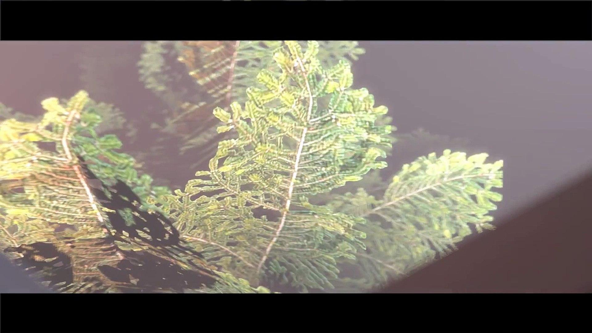 [SFM Undertale] UNDERTALE SONG (LOOSING CONTROL) UNDERTALE Music Video