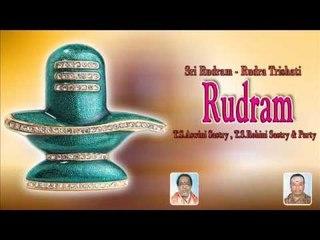 Sri Rudram - Rudra Trishati||Rudram