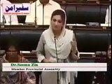 Best Speech of Dr Seema Zia - MPA PTI Over Vip Protocol Of Politicians