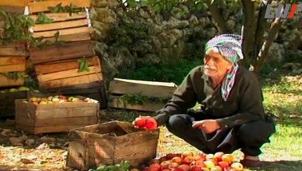 مسلسل بهلول الحلقة 2 الثانية   Bahloul HD