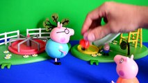 daddy pig Peppa pig episode Daddy Pig Mammy Pig George pig At The Park Story George pig