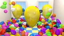 Ballon géant, Spectacle pour les Enfants à Apprendre les Couleurs les Enfants aire de Jeux Intérieure Surprise Amusante [DuckD