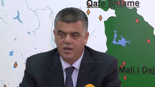 Dëmtimi i pyjeve, Koka: Të hiqet TVSH-ja për importin - Top Channel Albania - News - Lajme
