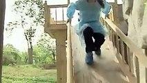 Cute baby pandas enjoy playing on slide