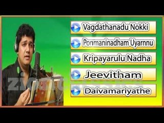 Biju Narayanan Evergreen Musical Hits | Jukebox