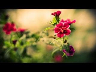 Malayalam Christian Devotional Songs Non Stop