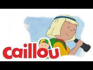 Caillou - Surprise Party  (S02E15)