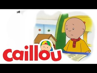 Caillou - A Surprise for Mommy  (S02E20)