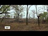 Zambie, un pays, un fleuve, des traditions - Echappées belles