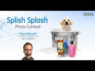 Sergeant's® Pet Care Products and Pet Specialist…