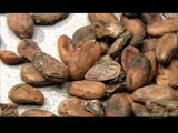 How its made: Speed skates, synthetic rubber, cocoa beans, and bulk chocolate
