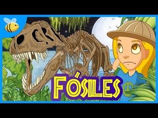 ¿Qué son los Fósiles? - Aula365