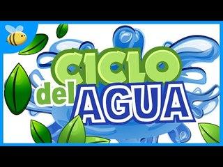El Ciclo del Agua y sus Estados - Aula365