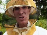 Bill Nye - The Science Guy - S02 - E11 - Insects