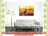 Canvas Culture - Stag Deer Landscape Canvas Art Print Box Framed Picture 28 Original 90 x 60cm