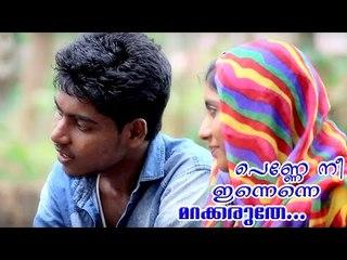 പെണ്ണേ നീ   Penne Ne Innenne   Malayalam New Album Song  2015 HD