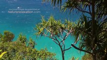 Islands of Paradise 1 Hour in the Fiji Islands (w Nature Sounds) Tropical Relaxation Video