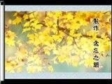 Beautiful Chinese Music【32】Traditional【Qing Guo Qing Cheng】