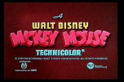 Mickey Mouse  Mickeys Parrot