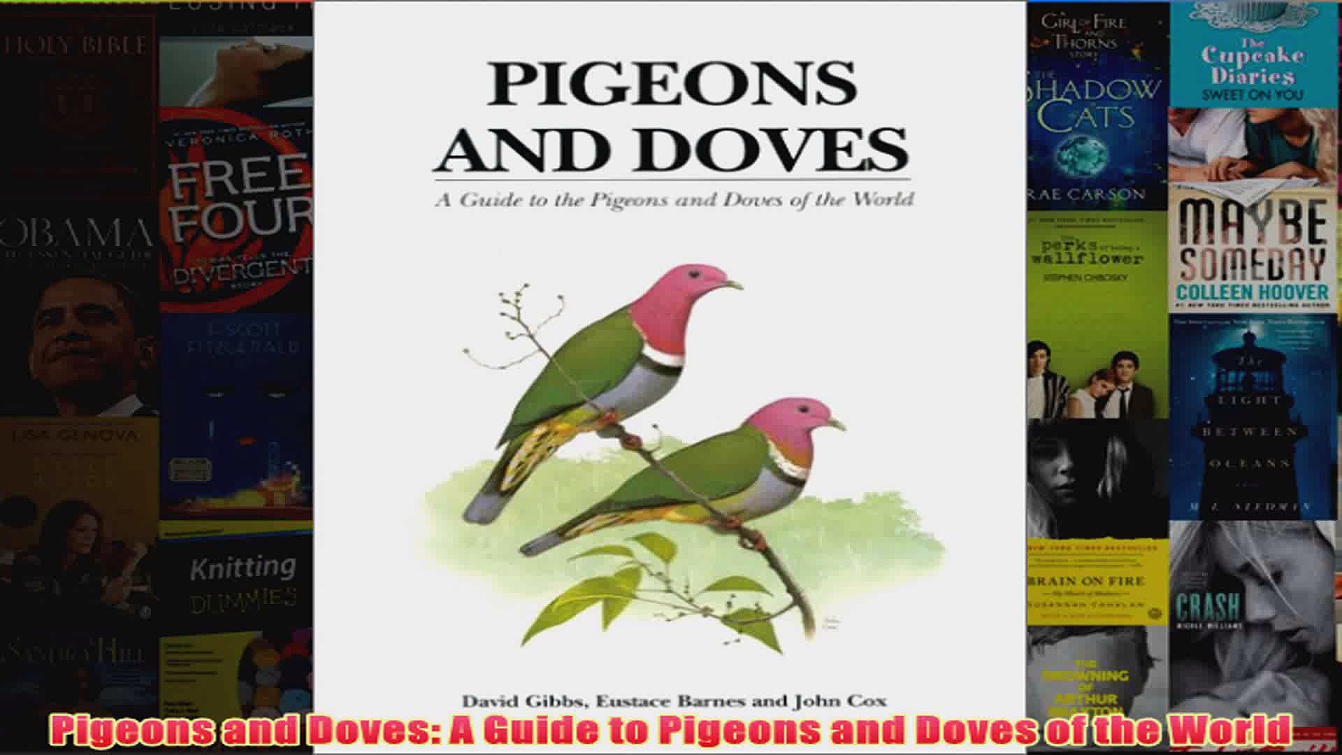 Pigeons and Doves A Guide to Pigeons and Doves of the World