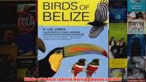 Birds of Belize Corrie Herring Hooks Series
