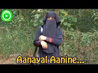 Mappila Album Songs New 2014 - Aanayal Aanine Pole  - Album Songs Malayalam