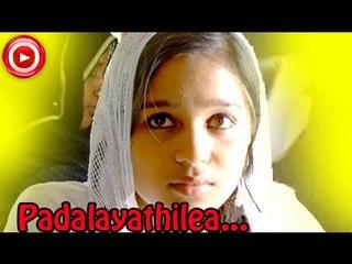 Mappila Album Songs New 2014 - Padalayathilea... - Album Songs Malayalam