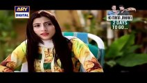 Mere Ajnabi Episode 22 Full on Ary Digital 30th December 2015
