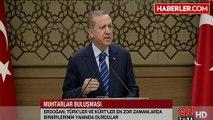 Erdoğandan Arınça Yanıt Eleştiriyorsam Bunu Ülkem Adına Yapıyorum