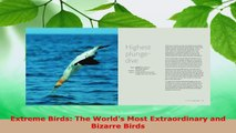 Read  Extreme Birds The Worlds Most Extraordinary and Bizarre Birds Ebook Free