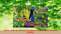 PDF Download  Lets Look at Animal Feathers Looking at Animal Parts Read Full Ebook